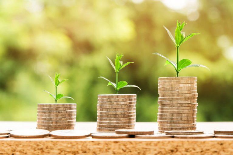 Financiranje rasta vodećeg drvoprerađivača