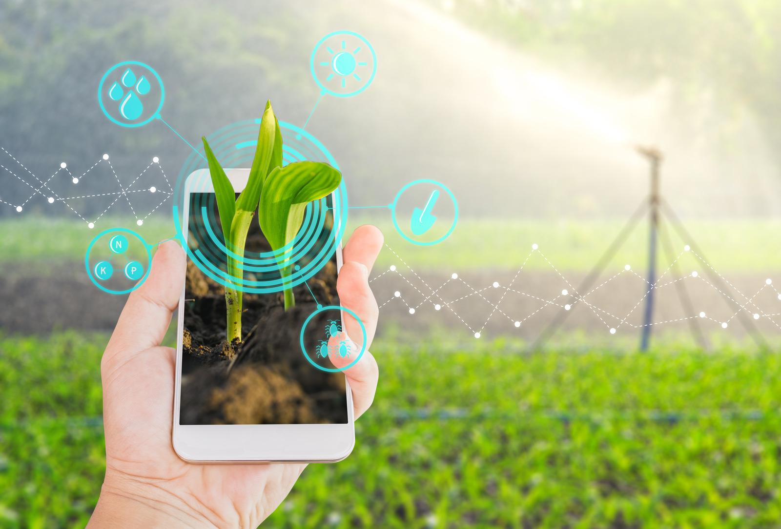 Digitalizacija poljoprivrede u punom jeku