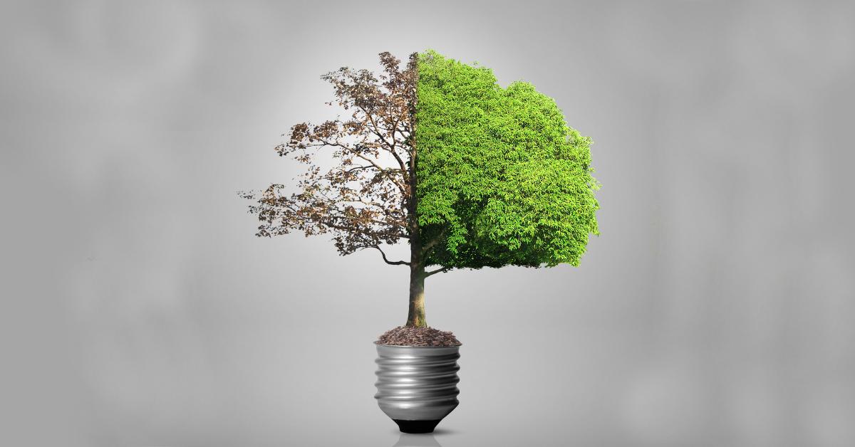 Apsolon_Zelena_tranzicija_energetska_učinkovitost